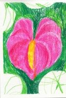 http://julie-nivert.com/files/gimgs/th-10_julie-nivert-flowers-2.jpg
